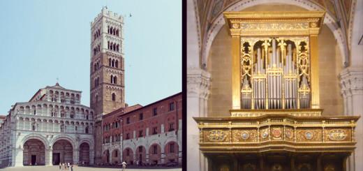 Duomo di San Martino e particolare organo